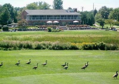 Fountains - Golf, Banquets, Bar & Grill in Clarkston Michigan